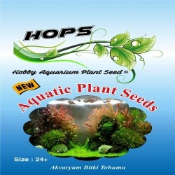 Fatih-Pet - Akvaryum Bitki Tohumu Aquatic Plant Seeds 12 li